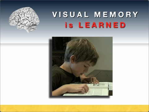 The importance of Visual Memory