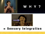 Experience sensory integration