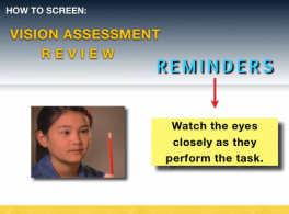 Vision and Learning Course II: Vision Assessment